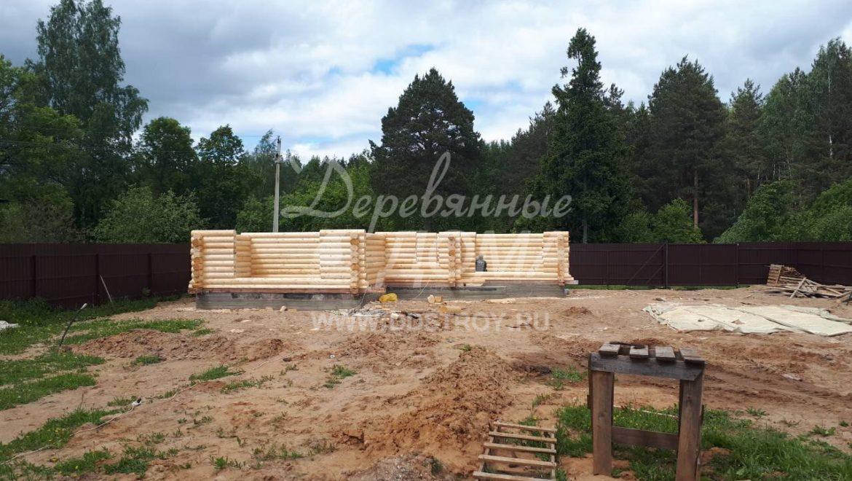 Продолжаются работы по возведению бани из оцилиндрованного бревна в д. Беляницы(07.06.2018)