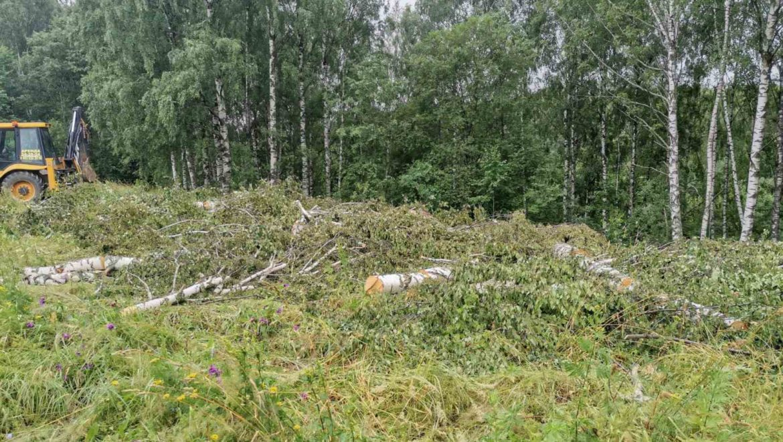 Работы по расчистке территории под будущее строительство жилого дома в поселке Говядово (16.07.2020)