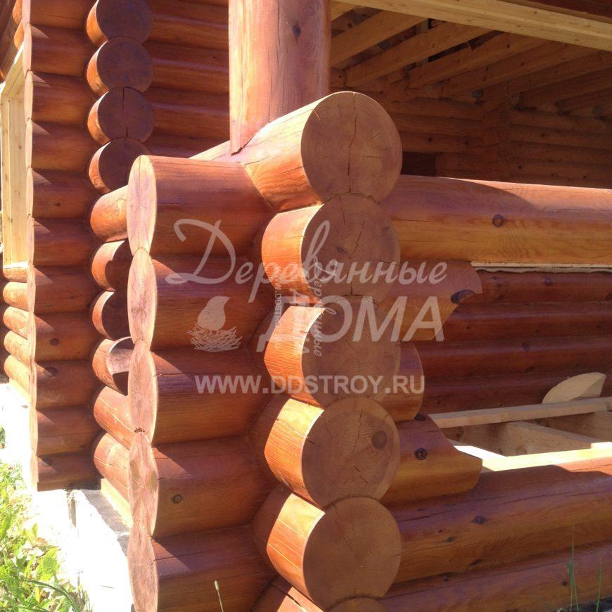 IMG_4258-e1501769141179.jpg